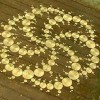 Amazing crop circle – huge – forms overnight